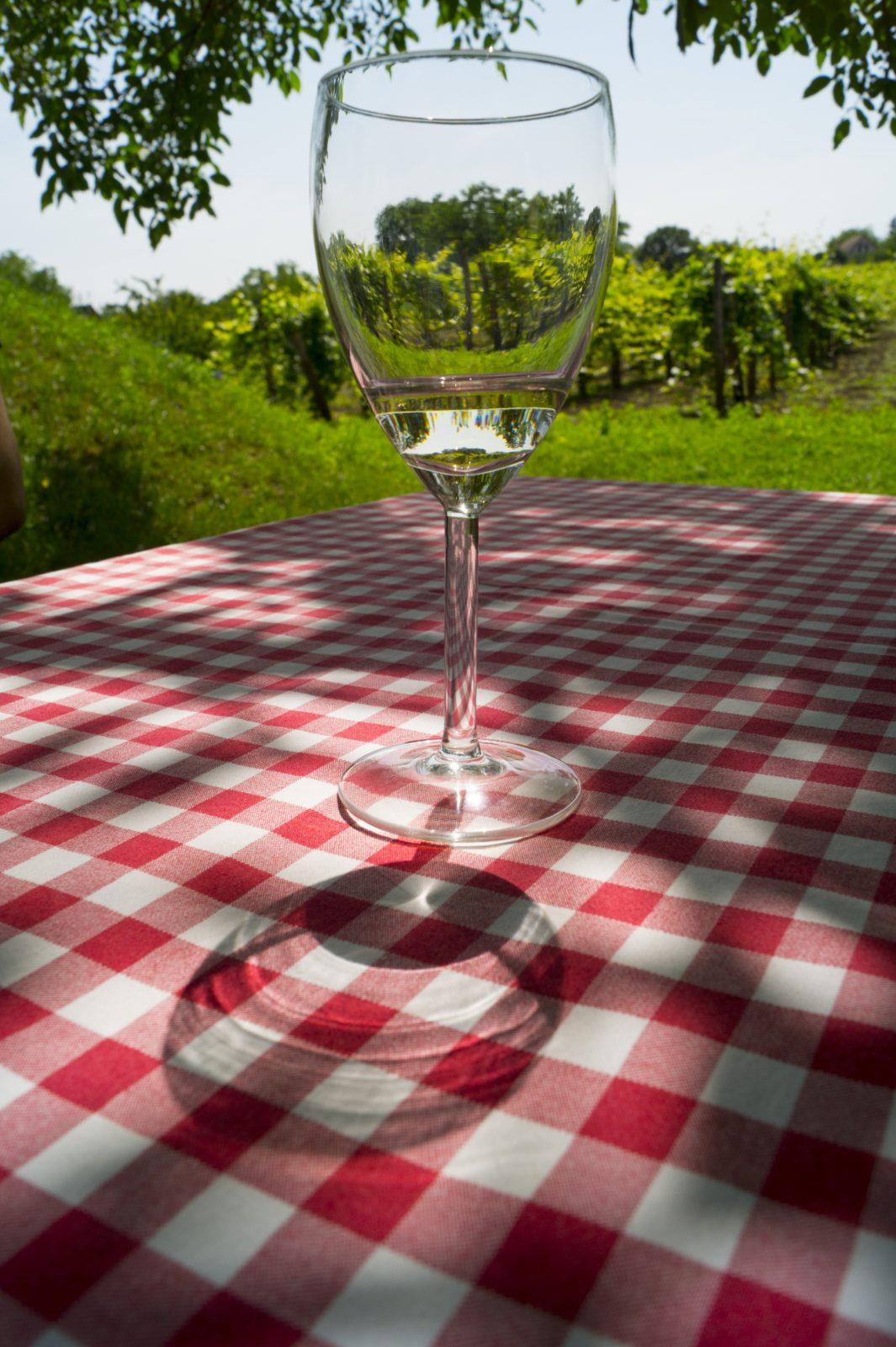 Etyek wine region